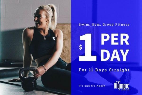 $1 per day trial