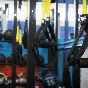 Trx Straps in the Arena